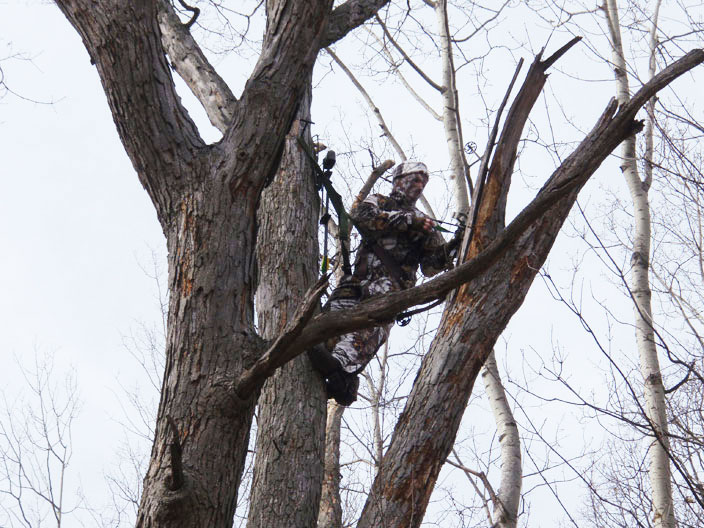 20 Reasons Why You Should Hunt From a Tree Saddle
