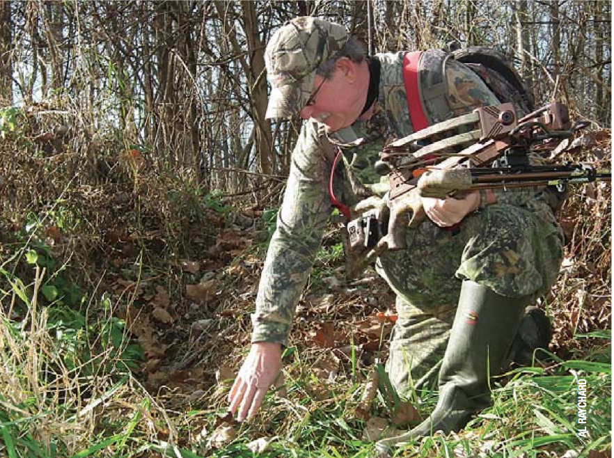 7 Tips You Should Know About Deer Hunting with a Crossbow