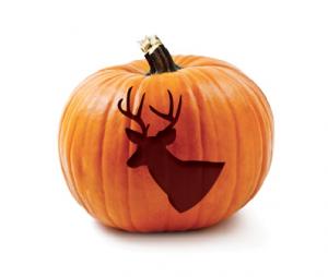 Get Your Free Ddh Deer Pumpkin Carving Pattern