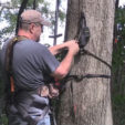 Follow This Critical Guide to Safe Treestand Use