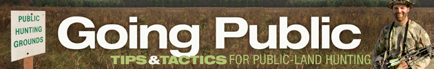 Whitetail deer hunting tips for public land