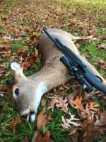 These Deer Harvest Numbers Don't Lie