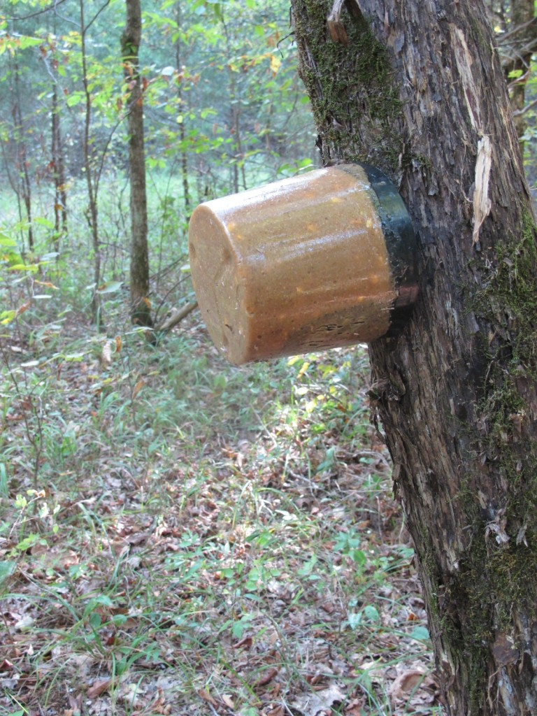 I also added a Stick 'n LIck Deer Pop from Extreme Hunting Solutions in the