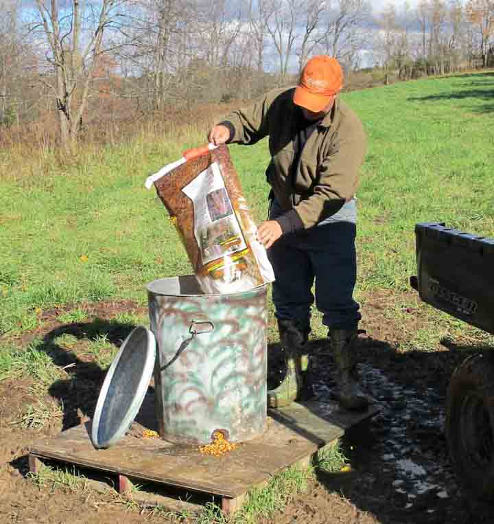 How to Build an Inexpensive, Durable Deer Feeder