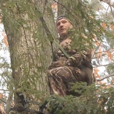 Tree Harness Primer For Public Land Hunters