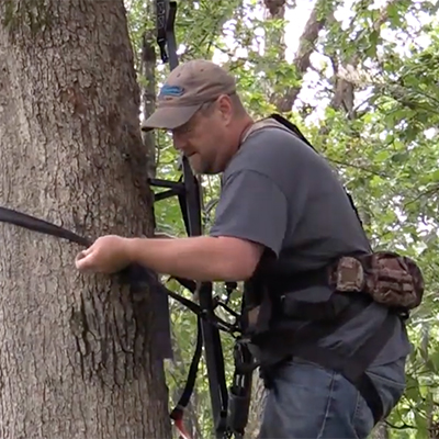guide to tree stand safety