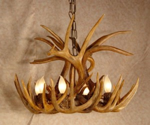 Super How To Make An Antler Chandelier Wiring Digital Resources Xeirawoestevosnl