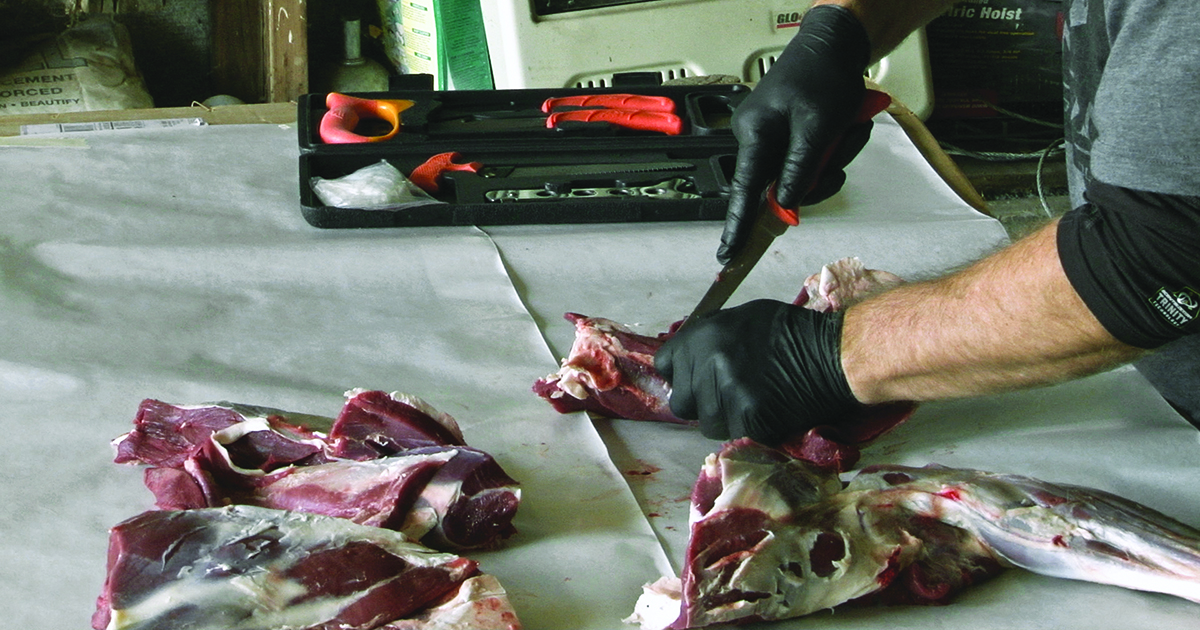 The Science of Venison Spoilage